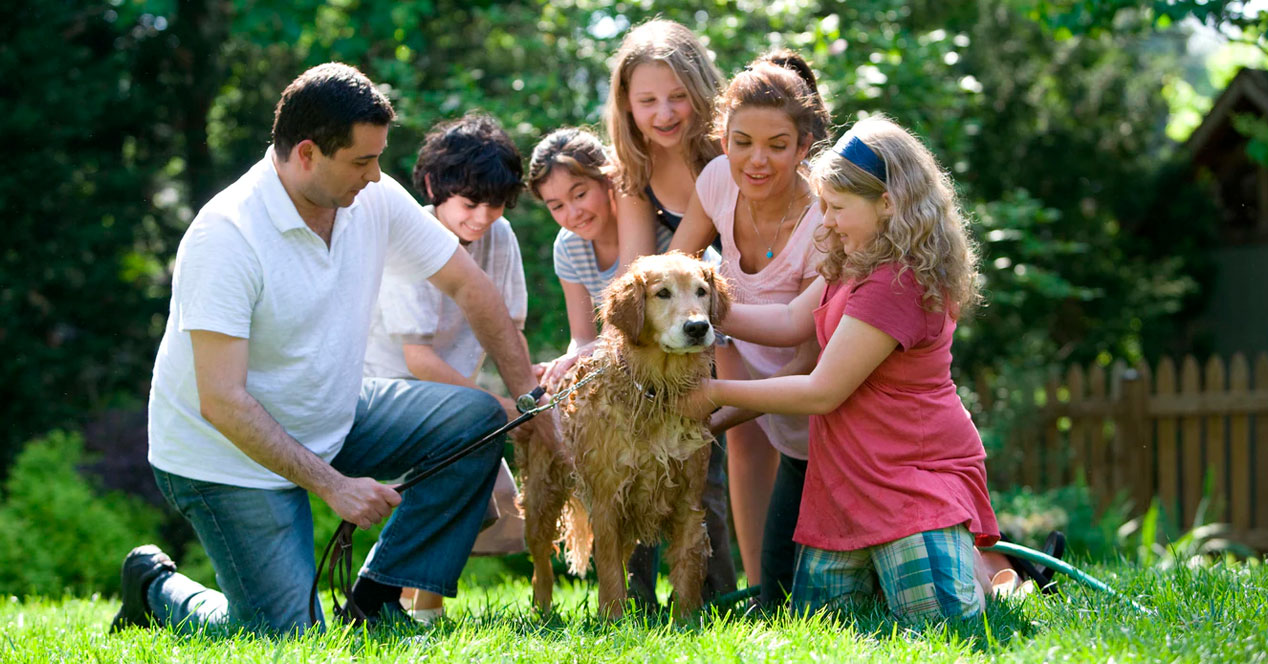 familia-personas